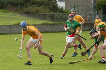 Hurlers secure place in county final