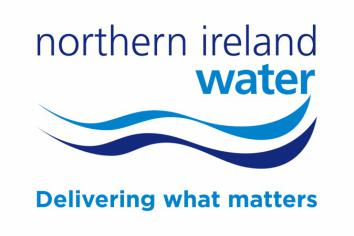 Recurring burst water pipe in Kilkeel will be replaced when money is available: NI Water